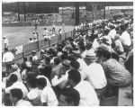 Fans watch a baseball game between the Army Cardinals and Nashville Moore General Hospital at Oak...