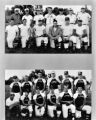 Eagles and Lions baseball teams